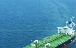 Prevention of Environmental Pollution by Ships