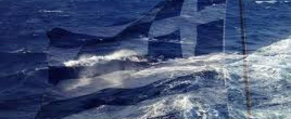 Ασφάλεια Μικρών Σκαφών